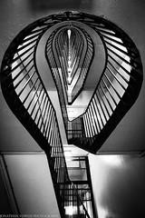 Looking up (Jonathan Vowles) Tags: stairs cranbrook london puteaux lubetekin