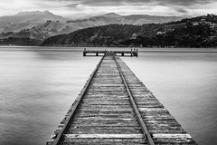 The end of the track (David Feuerhelm) Tags: coast wood pier rails nikkor bw serene contrast robinsonsbay newzealad nz wideangle longexposure nikon d7100 silverefex jetty