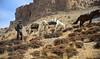 There once was a Silk Road, India 2016 (reurinkjan) Tags: india 2016 ©janreurink himachalpradesh spiti kinaur ladakh kargil jammuandkashmir silkroad tsarapvalley horseརྟ།rta horseརྔོག་མ་ཅནngokmachen himalayamountains himalayamtrange himalayas landscapepicture landscape landscapescenery mountainlandscape