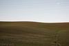 Val D'Orcia e Crete senesi (Sandro Albanese) Tags: crete siena senesi cretesenesi toscana tuscany landscape landscapes verde green paesaggio paesaggi colline hill round tondo rotondo natura nature