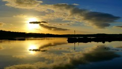A Time To Reflect (Michelle O'Connell Photography) Tags: scotland bowling riverclyde silhouette silhouettephotography reflect reflection reflectiononwater trees bowlingharbour bowlingbasin clydeside wintersky skylovers dumbartonshire michelleoconnellphotography