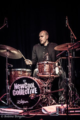 New Cool Collective-8155