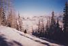 (matt.bower) Tags: film olympusxa ajax northstar
