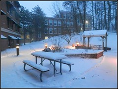 Winter Scene In Chelmsford, MA. - Photo Taken by STEVEN CHATEAUNEUF On January 7, 2017 (snc145) Tags: winter seasons sky trees snow building hill lights gazeebo benches architecture snowstorm coldweather bushes picnictables forest photo chelmsford massachusetts usa january72017 stevenchateauneuf soe autofocus flickrunitedaward townhall