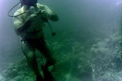 n0005.19 (avaragado) Tags: barbados coralreefclub fd197504 fd197604 fd197905 n0005 tonysmith