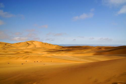 DSC07754 - NAMIBIA 2013