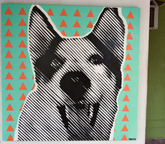 Maca (Necio.) Tags: stencil halftone necio colombia dog husky indoor estencil canvas