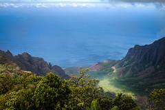 Kalalau Valley (Casey Fox) Tags: hawaii kauai kalalauvalley ocean pacificocean valley coast forest fujix100s fujifilmx100s napalicoast