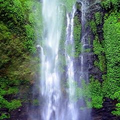 Jungle waterfall (PeterCH51) Tags: java indonesia water waterfall cobanrondowaterfall eastjava cobanrondo peterch51 malang jungle jawatimur green rock
