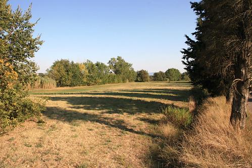 Battle of Lago Trasimeno [217 BC]  - point x