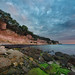Sunrise at Stevns Klint
