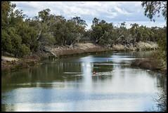 Darling River at Menindee NSW-1= (Sheba_Also 11,000,000 + Views) Tags: river nsw darling menindee