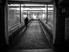 """the end of the line • <a style=""""font-size:0.8em;"""" href=""""http://www.flickr.com/photos/100018714@N02/21410406584/"""" target=""""_blank"""">View on Flickr</a>"""