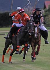 Polo (rdlt) Tags: sports caballos action match ho polo mallets