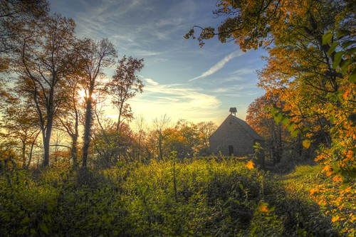Autumnal Beauty