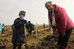 Creating Coed Ffos Las / Plannu Coed Ffos Las (Rory Francis) Tags: plant tree coed firstworldwar planting woodlandtrust rhyfelbydcyntaf carwe carway plannu coedcadw gwendraethvalley cwmgwendraeth centenarywoods ysgoltrimsaran coedffoslas