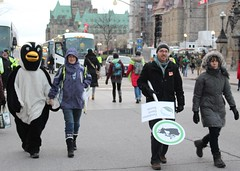 (m.gifford) Tags: green march earth ottawa protest parliament 350 environment parliamenthill climatechange climate cop21 cdnpoli 100possible 100possible100possible100possible