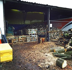 "Still working away getting next years firewood supply sorted #wardenstreecare <a style=""margin-left:10px; font-size:0.8em;"" href=""http://www.flickr.com/photos/137723818@N08/23032251869/"" target=""_blank"">@flickr</a>"
