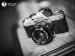 Canon AV-!Day 320 (Jeff Land) Tags: project photography photo photographer portfolio warwickshire stratforduponavon jefflandphotography wwwjefflandphotographycouk wwwphotowarwickshirecouk