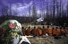 BOUDDHISME RUSSIE (m.bonneville) Tags: religion monks russie bouddhisme moine russianfederation boudhism boudhisme fotodom basereportage mourotchi republiquebouriate transmisgr