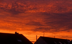 Burning Sky through a special fly screen filter :-) (G. Lang) Tags: sky germany deutschland himmel wolken roofs crop morgen manually mornig badenwrttemberg dcher burningclouds linkenheim brennenderhimmel
