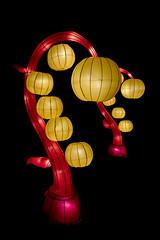 Lanterns and lampions (Martijn Nijenhuis) Tags: china november light dark paper nikon d750 lantern martijn lampion donker zuidlaren lantaarn 2015 nijenhuis sprookjeshof afsnikkor2470mmf28ged