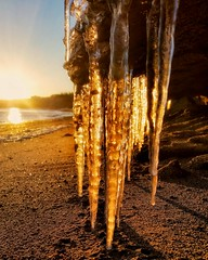 Wind chill warning 🌅 (ossington) Tags: golden sunset coolest winter icicle happiness frozenlandscape softlight
