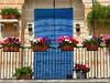 Covered Door (Sandra Leidholdt) Tags: balcony flowers door sandraleidholdt europe malta flowerboxes marsaxlokk plant flower