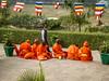 Sarnath monks #2 (oldad57) Tags: india sarnath travel saffron orange monk buddhist