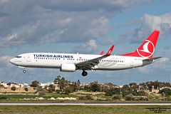 TC-JVY LMML 10-01-2017 (Burmarrad) Tags: airline turkish airlines aircraft boeing 7378f2 registration tcjvy cn 60024 lmml 10012017