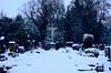 Alter Dorffriedhof - Old village graveyard (cammino5) Tags: friedhof graveyard winter snow markteinersheim bayern franken deutschland