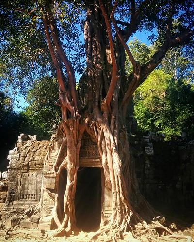 Ta Som Temple #Cambodia