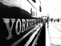 Here I Go Again (sjpowermac) Tags: driver d9002 reflection deltic york clambers yorkshire december alone concentration train railway diesel locomotive station again here platform 2016 admired enthusiasts nameplate 55002 cab blur bokeh
