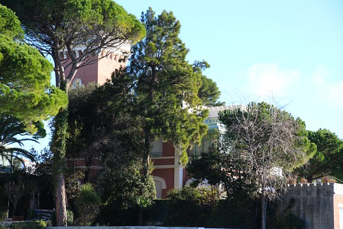 Photo gallery of jardin botanique de la villa thuret in for Jardin thuret 06160 juan les pins