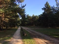 IMG_6378 (marcoderksen) Tags: mtb atb mountainbike veluwe gelderland