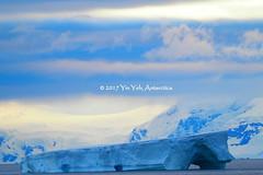 P1101734 (difi1024) Tags: stc olympus antarctica landscape falkland southgeorgia