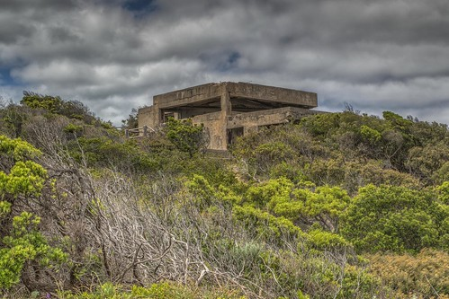 Portsea Fortifications: Looking Up