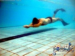 """02 febbraio 2017 - Prove sub & Freediving... • <a style=""""font-size:0.8em;"""" href=""""http://www.flickr.com/photos/138167729@N03/32402637270/"""" target=""""_blank"""">View on Flickr</a>"""