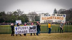 2017.01.21 Women's March Washington, DC USA 2 00158