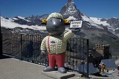Anthropomorphism. An Insult to Sheep. (AGrinberg) Tags: switzerland 1882060 zermatt wolli sheep statue gornergrat