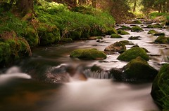 babbling black brook (Mace2000) Tags: longexposure nature germany landscape deutschland 350d quality natur surreal lookatme blogged landschaft schwarzwald blackforest int langzeitbelichtung payitforward ndfilter schwarzenbach 1000v 2for2 1000v40f lovephotography mace2000 babblingblackbrook img1449 erstesahne countryscenery