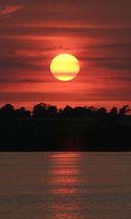 Sunset at Draycote
