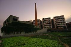 Abandonned factory (Pat Rioux) Tags: china dusk sigma chengdu 1020mm sichuan wideanglelens lijiatuo