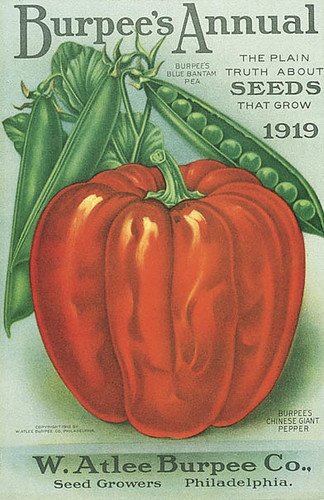 Burpee 1919 Front Cover