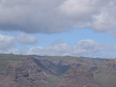 IMG_2400 (Dan F.) Tags: hawaii napalicoast bluedolphin kaua'i