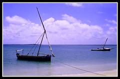 Kenya - Lamu - 08/2005