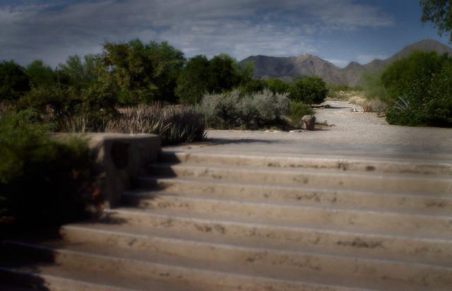 Desert Stairway at Taliesin West, Autumn 2005