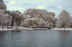 Serenity (RtOaNn) Tags: ir singapore surrealism surreal infrared bishanpark nikonstunninggallery xgf02 x0201 x0202