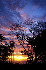 PALAU - Beautiful Sunset (BoazImages) Tags: sunset red sky orange sun hot beach beautiful topv111 clouds skyscape island pacific exotic tropical palau redhot topvaa photooftheweek071606