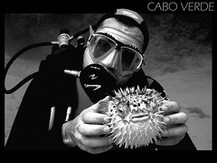 Under the sea, Cabo Verde (Payuta Louro) Tags: trip travel sea vacation bw pez mar photo blackwhite deep urko louro caboverde globo blackandwhte buceo ltytr2 ltytr1 ltytr3